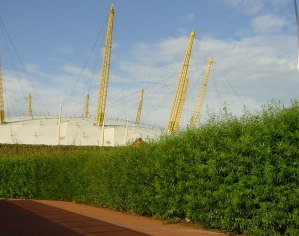 Non acoustic Green Barrier in living willow creating attractive walkway to O2 Arena