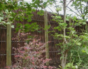 Woven willow screen with complimentary planting.