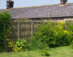 Non acoustic Green Barrier in woven willow used as screen between two gardens.